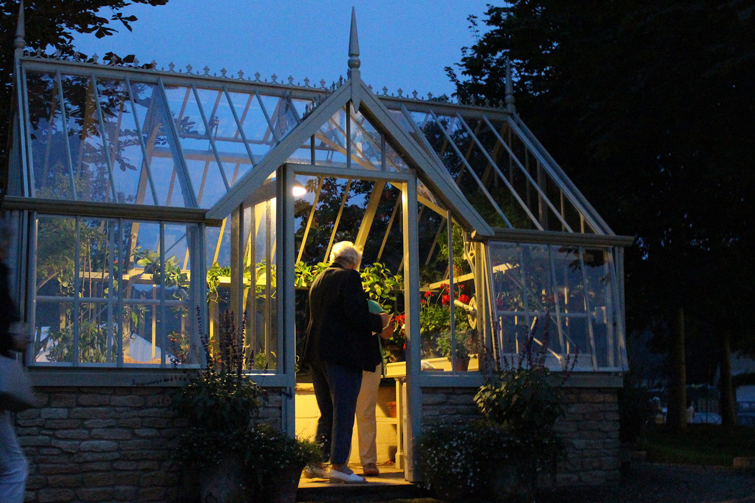 Greenhouse lights in use (Alitex greenhouse accessories)