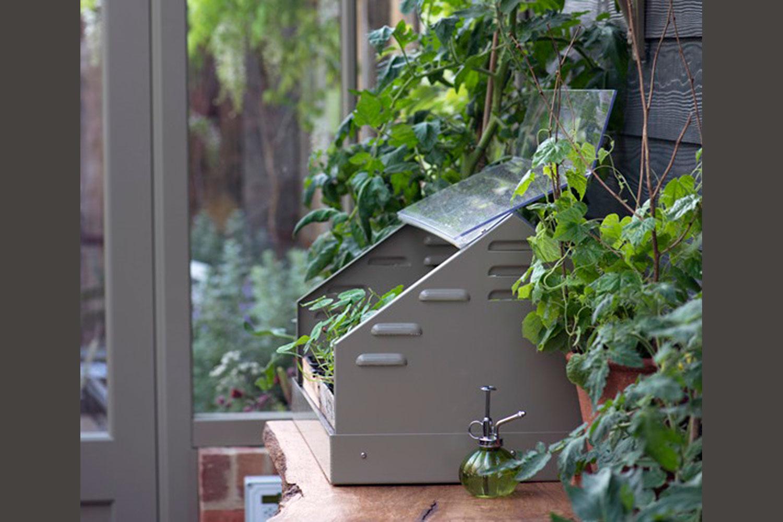Alitex Professional Propagator in Glasshouse | | Alitex Victorian Greenhouses USA