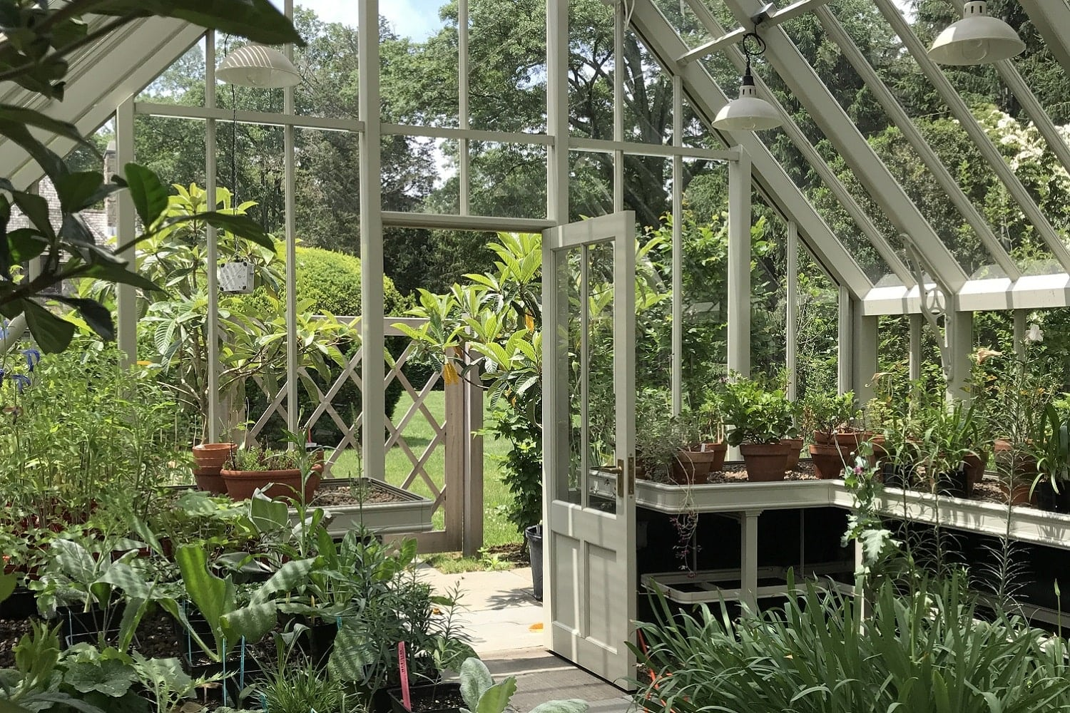 Inside a Bespoke Alitex Greenhouse