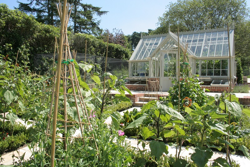 Greenhouse in a vegetable garden